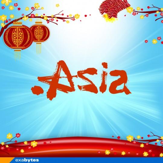 .asia domain name