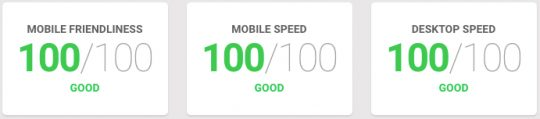 Google testmysite score