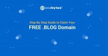 domain ordering process