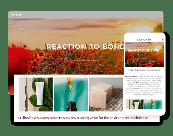 website-builder-portfolio-store1